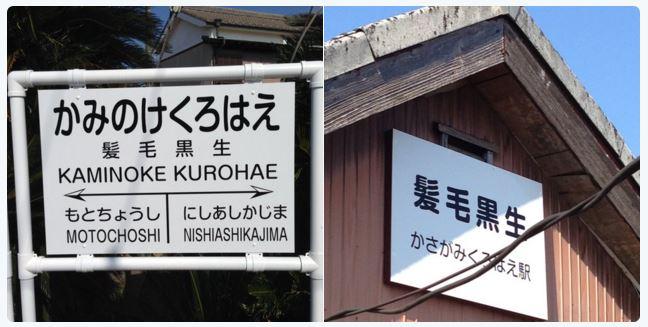 Kurohae.JPG