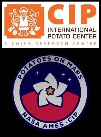 Potato_CIP.jpg